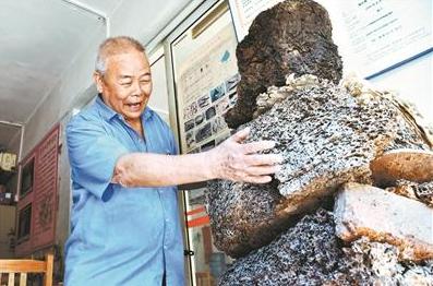 """77岁""""蚁人""""治蚁60年 家中养10万只白蚁供研究"""