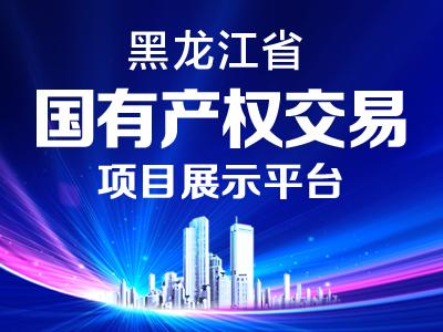 黑龙江省国有产权交易市场项目展示
