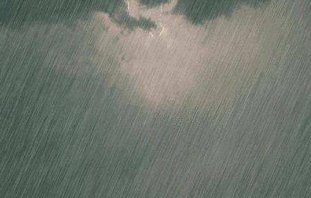 黑龙江应对强降雨 安全转移5万余人无人员伤亡报告
