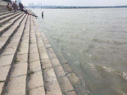 降雨日数多 松花江哈尔滨段距警戒水位2.42米