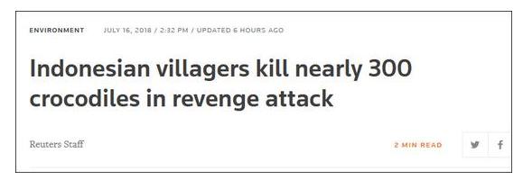 印尼男子遭鳄鱼咬死 400名村民屠杀近300条鳄鱼报复