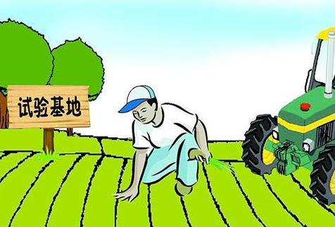 """白天回村晚住城 农民成为新型""""上班族"""""""