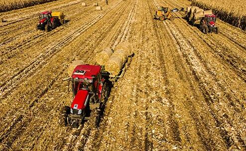 2043萬畝超7成糧食已收獲 哈爾濱全市秋收接近尾聲