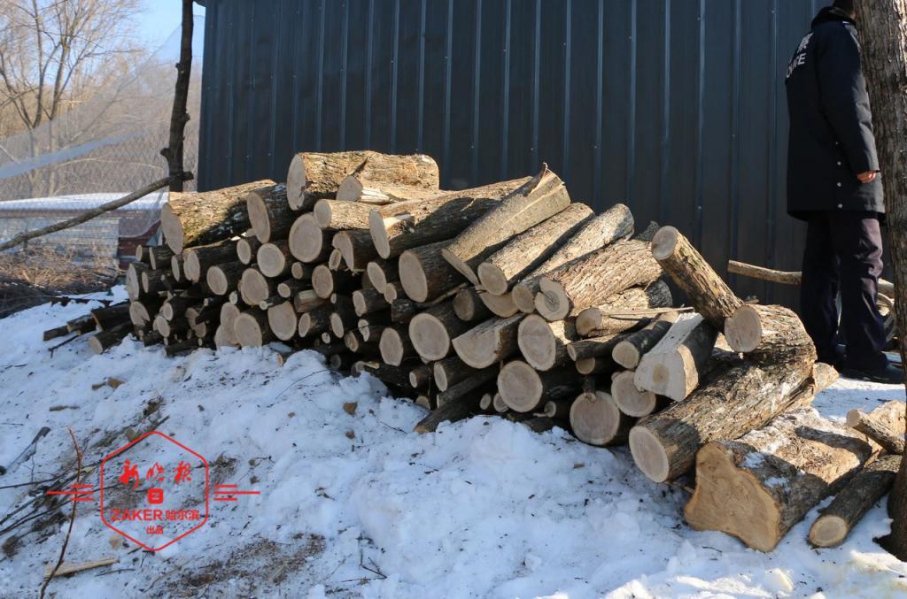 """为建羊圈男子""""放倒""""36棵树?包括国家二级保护植物"""