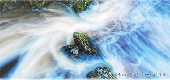 保护开发相得益彰 黑龙江省茅兰沟水墨画里求平衡
