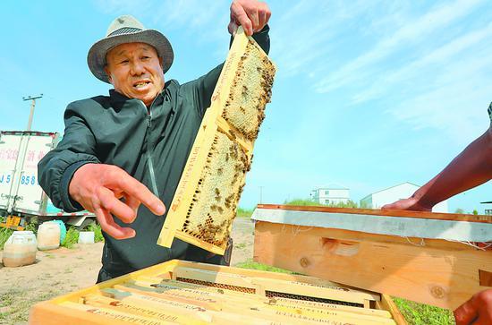 追花逐蜜半世纪酿蜂味 线上直播一天销售额500万