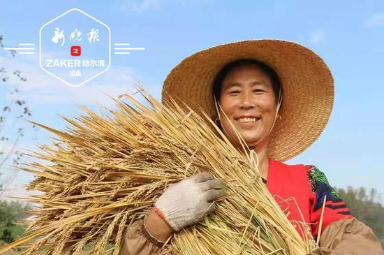 """""""中国饭碗""""装下更多自家粮 我省将建这些粮食产业基地"""