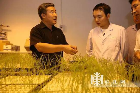 中国工程院院士陈温福(左一)。资料图