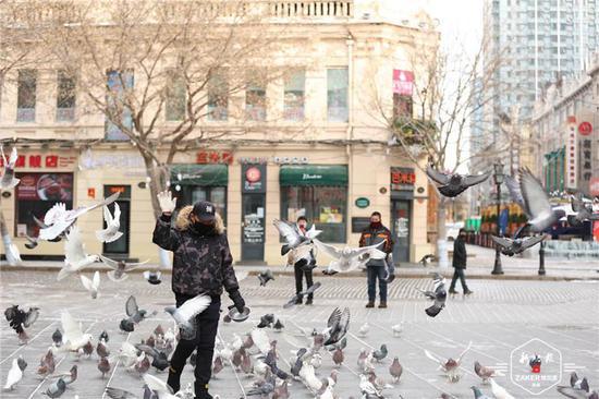 冰城老街喂鸽人:7年花5万退休金 每天背40斤鸽粮来广场