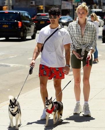 夫妇俩带狗出门散步,却发生意外。