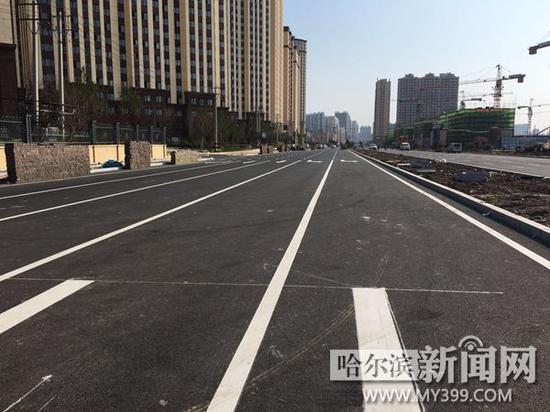 顾新街从龙葵路至和谐大道路面铺设完毕。