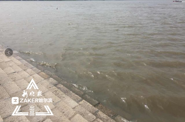 黑龙江18至20日有暴雨 入汛后全省平均降水同比增37.5%