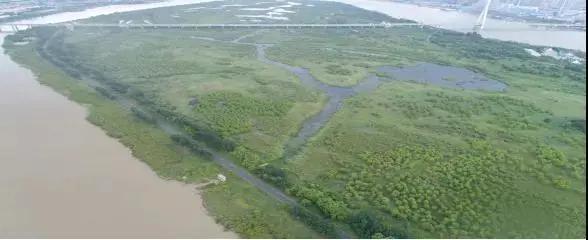 """好消息!黑龙江省又有两处湿地公园入选""""国家队"""""""
