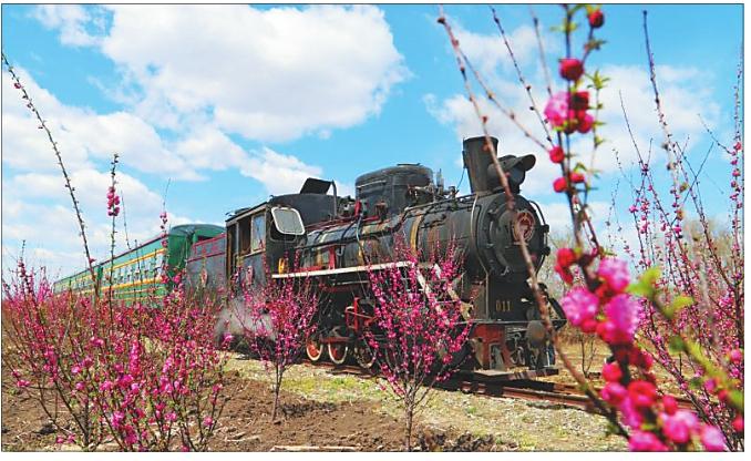 """""""世界级旅游珍品""""桦南林业局森林旅游小火车穿越今昔"""