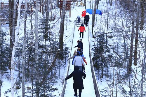 龙游家庭体验官在威虎山穿林海、跨雪原