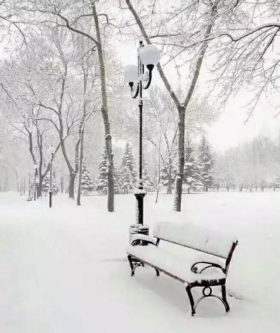 """""""忽如一夜春风来,千树万树梨花开。牡丹江大雪,已然成了雪的王国"""""""