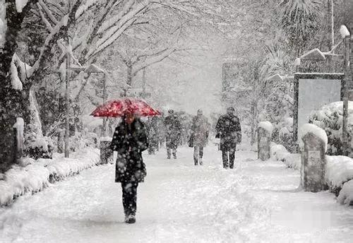黑龙江省气象局启动重大气象灾害(暴雪)Ⅳ级应急响应
