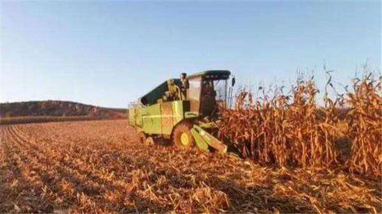 抢排积水、组织快手 黑龙江全省已收农田达5573余万亩