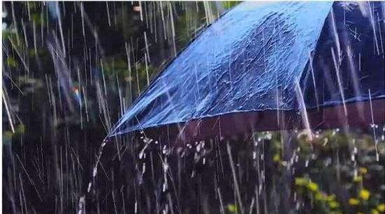 三局会商汛情:数条河已过洪峰 未来一周仍多降雨
