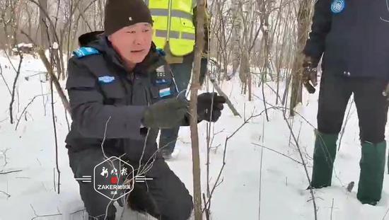 救援队和志愿者进山地毯式搜寻 清除非法捕具百余个