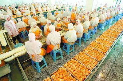 哈尔滨市重点食品企业完成疫情防控全面排查