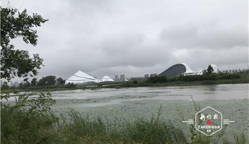 免费游览太阳岛外滩湿地:可步行或乘观光车