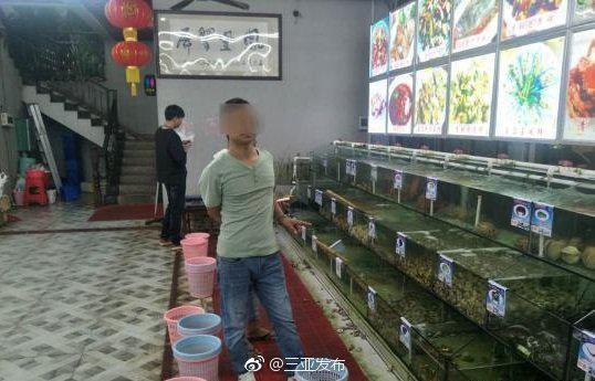 图片来自三亚市委宣传部新闻发布官方微博