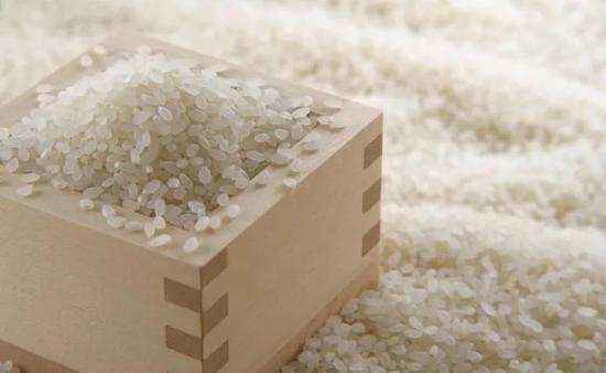 银奖米企:规范化管控 用好原料产好大米