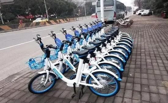 哈市建了个微信群专管共享单车的 有人专门拍照发群里