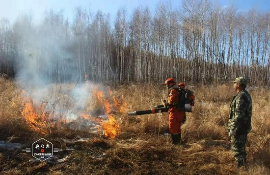 哈市森林消防支队组织计划烧除任务 降低森林火灾危害