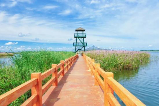 哈尔滨呼兰河口湿地公园 Photo by去哪儿聪明旅行家 @樱殇之恋