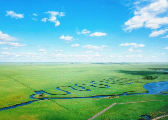 黑龙江扎龙国家级自然保护区 Photo by去哪儿聪明旅行家 @樱殇之恋