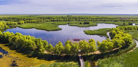 双鸭山安邦河国家湿地公园