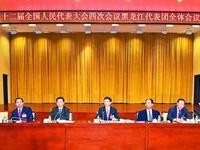 孟建柱参加黑龙江省代表团第一次全体会议审议