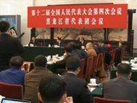 黑龙江省长陆昊回应天价鱼:这不是偶然 也不是坏事