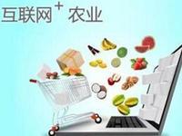 王金会:提升农业产业链和价值链