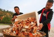吃法太壕!螃蟹海参直接拿锅煮