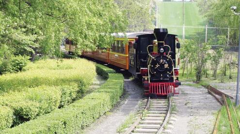 儿童公园的小火车