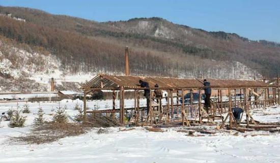 二道沟林场建设林海人家框架初成