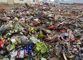 哈尔滨呼兰区黑臭水体综合整治下月启动