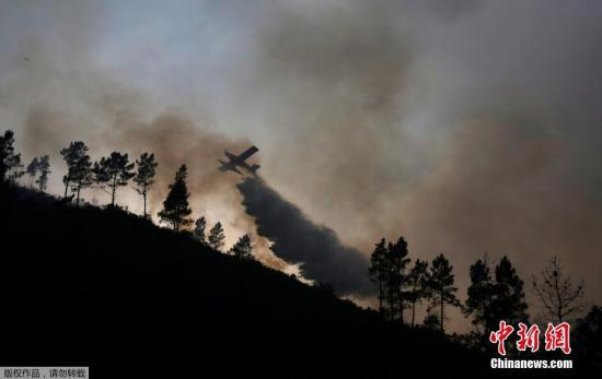 资料图:森林大火。