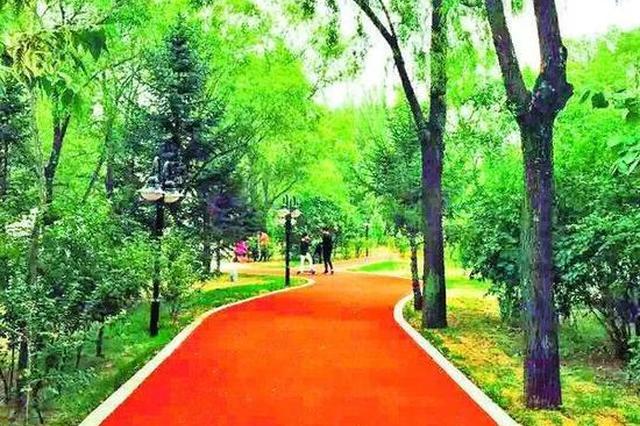 哈尔滨松北新区中心公园开放 有球场带塑胶跑道