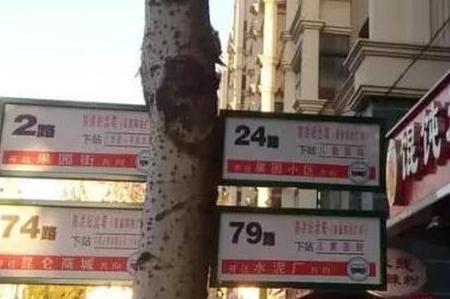 哈尔滨防洪纪念塔公交车站拆分 怎么坐车快来看