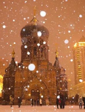 风雪交加:哈尔滨昨晚要多美有多美