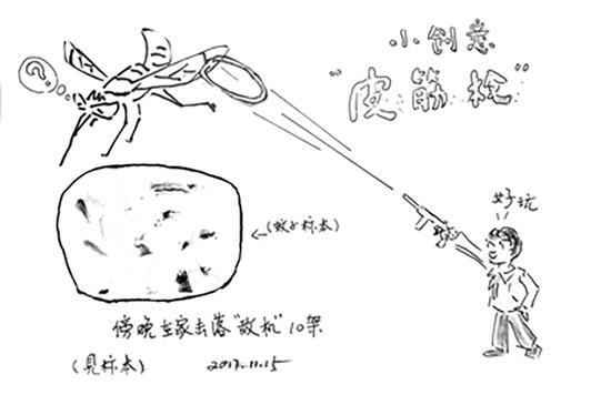 庞培华演示木头枪打蚊子。
