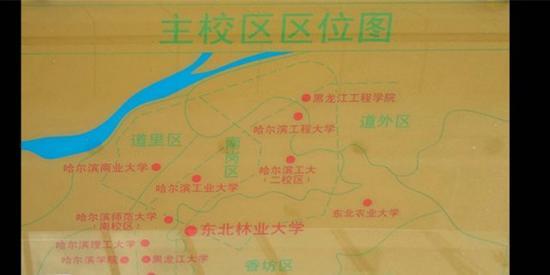 东北林大位置图