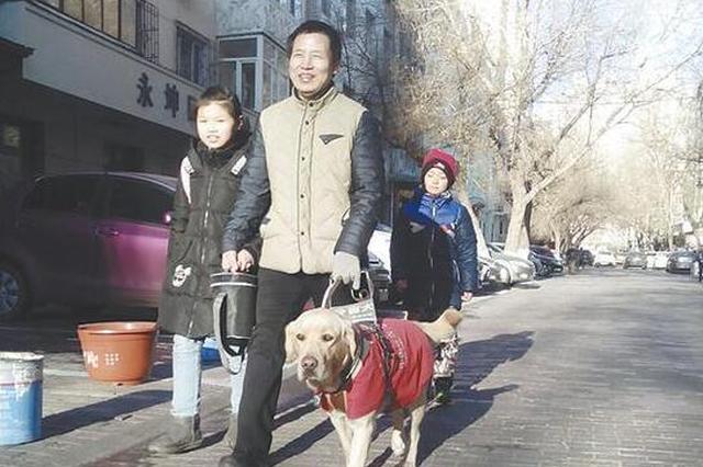 冰城首只持证导盲犬与主人共度3个月磨合期