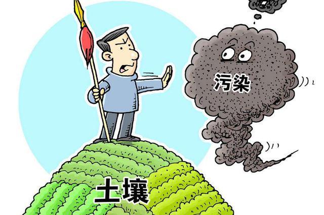 哈尔滨全市开展春季环境秩序清理整治督导检查