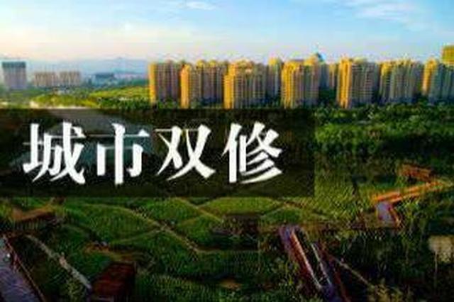 """哈尔滨要给城市""""治病"""" 将改善环境修复地貌"""