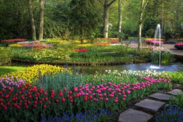 等了一冬终于能赏花闻香了 26日黑龙江省植物园开园